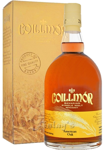 Coillmor Liquid Sun 6 Year Old